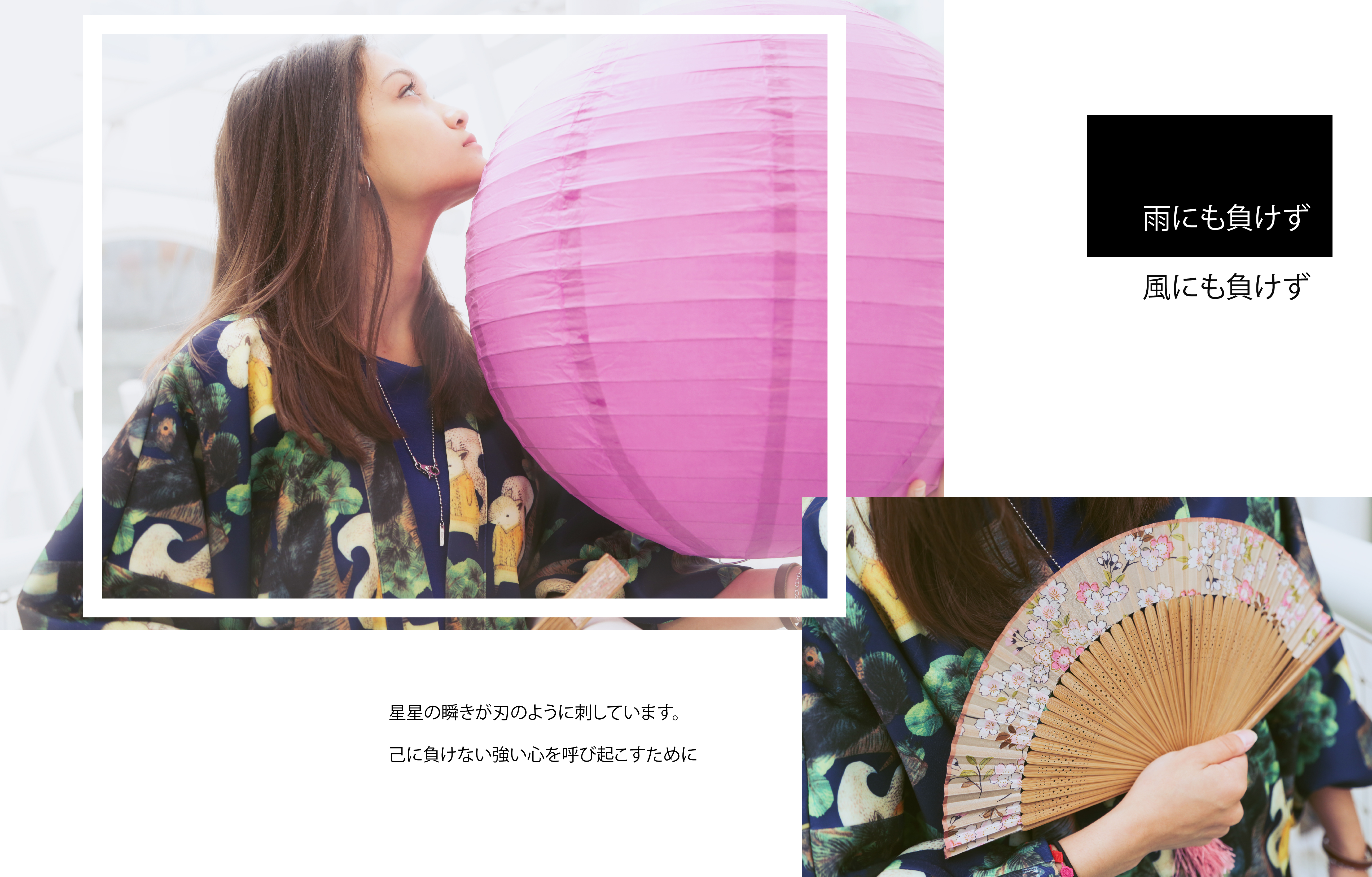 Japanese Brand Design and Photography